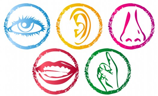 bigstock-Five-Senses-Icon-set-091713