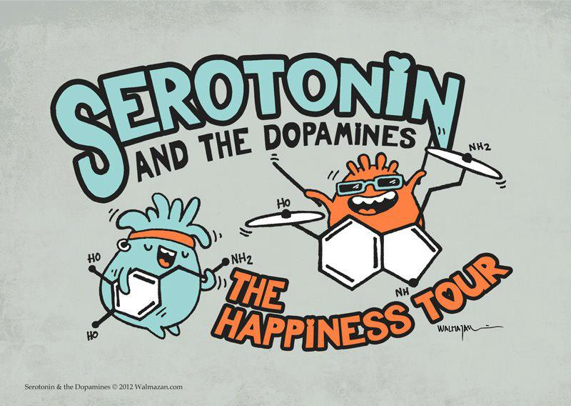 serotonin-and-the-dopamines-the-happiness-tour