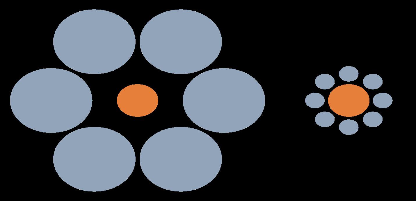 Slika 1 . Ebinghausova iluzija – središnji krugovi su jednake veličine, ali onaj okružen velikim krugovima deluje manji